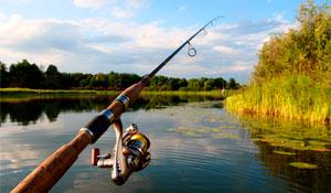 pesca_mini
