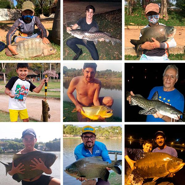 pesca_2_site