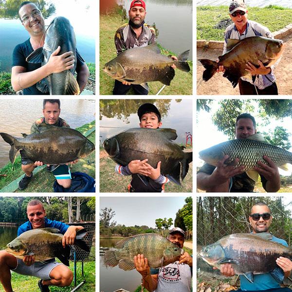pesca_3_site