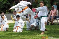 Karate2018-(108)