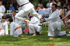 Karate2018-(111)