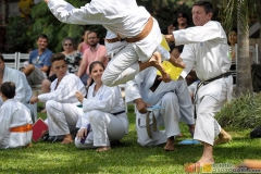 Karate2018-(114)