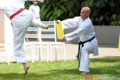 Karate2018-(95)