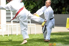 Karate2018-(96)