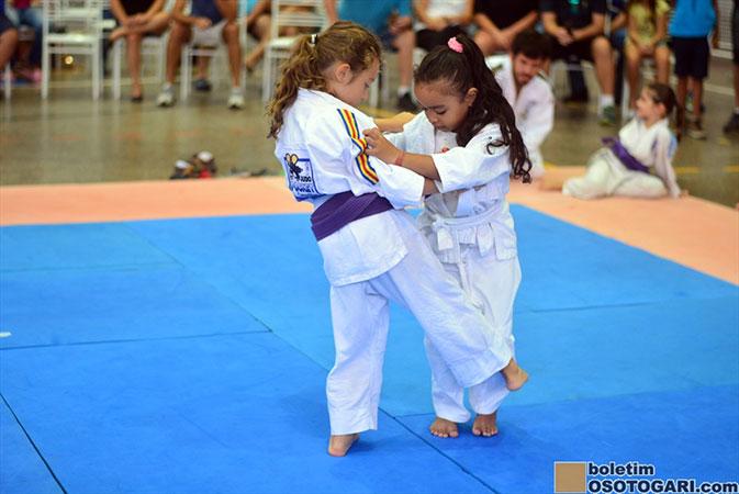 judo_pocket_competition_2017-99